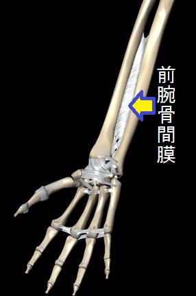 http://d.hatena.ne.jp/bodywise/20131004