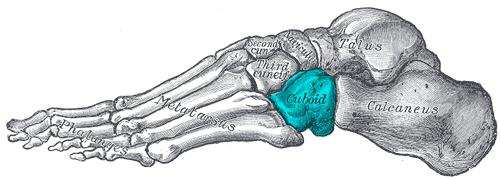足根洞症候群(捻挫して、しばらく経った後の足首の痛み・違和感)
